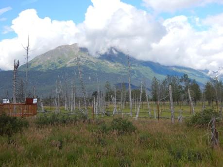 Alaska-2015 219